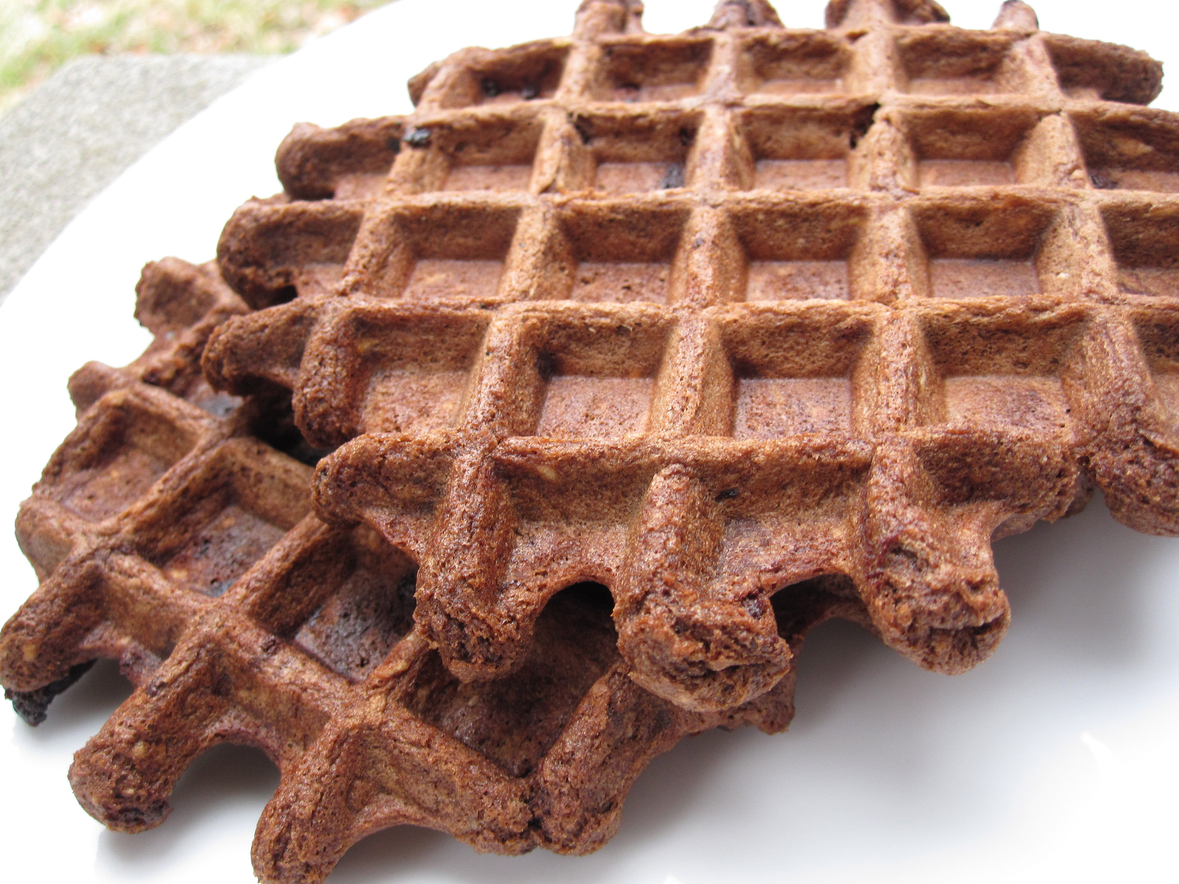 Chocolate Chip Brownie Waffles From Veganomicon | Killer Bunnies, Inc