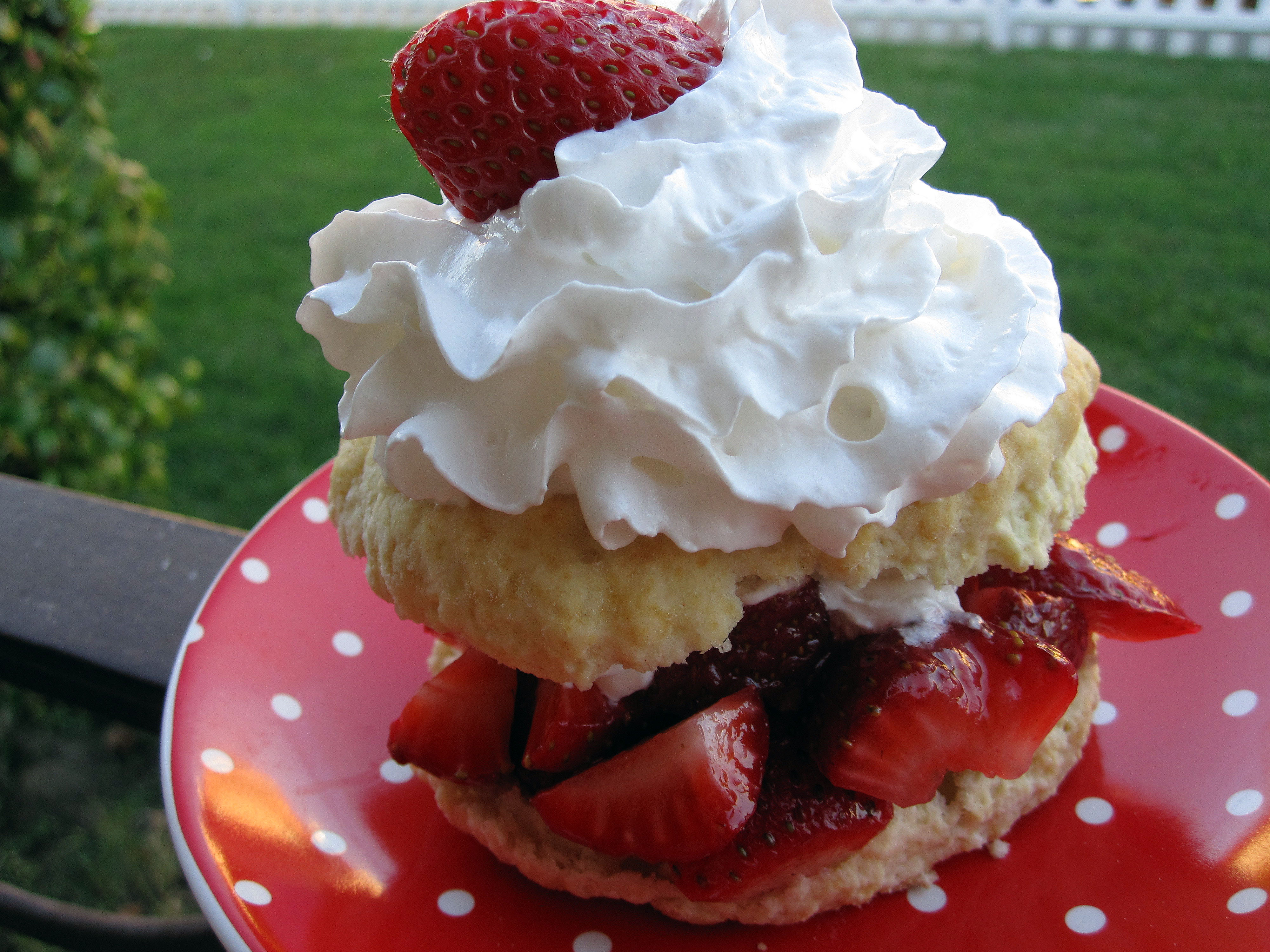 Vegan MoFo Recipe #9: Jemseg Strawberry Shortcake