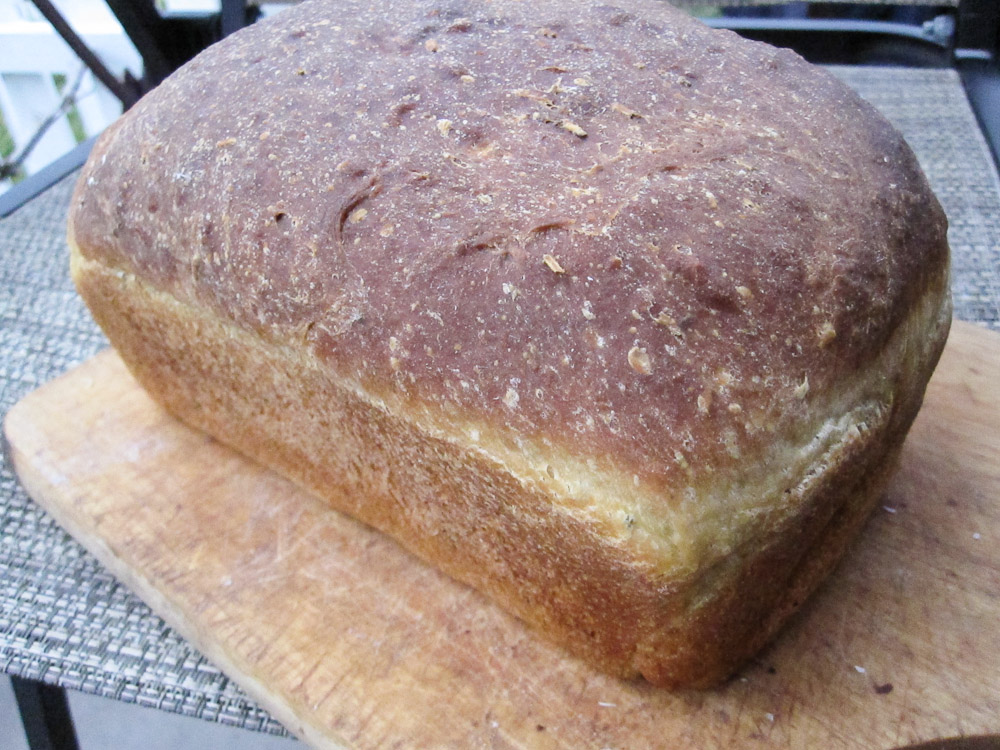 potato rosemary bread | Killer Bunnies, Inc