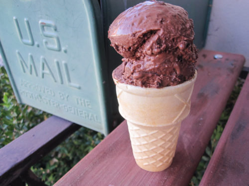 Vegan Brownie Chocolate Ice Cream-2
