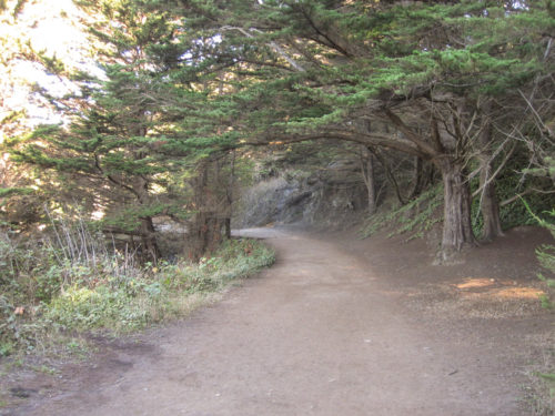 lands end sf hike-5
