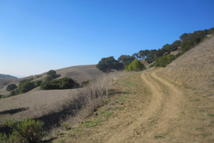 Bear Creek Staging Area, Briones Regional Park 5.0 Miles