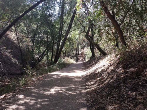 Rancho San Antonio Wildcat Loop 5.0 Miles