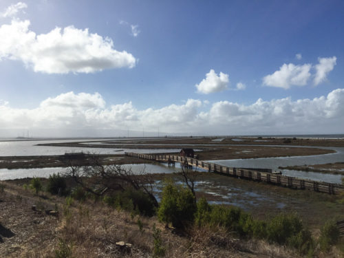 Don Edwards San Francisco Bay National Wildlife Refuge 2.75 miles