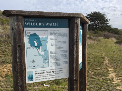 Wilburs Watch Pescadero Hike